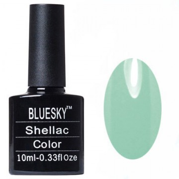 Shellac bluesky Y №001