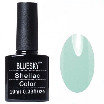 Shellac bluesky Y №008